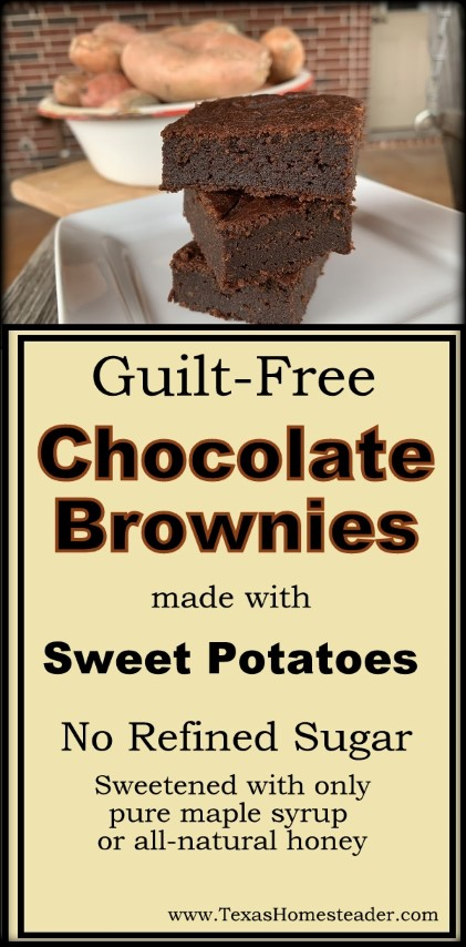 These brownies are refined-Sugar free and made with sweet potatoes for a guilt-free sweet chocolaty treat. #TexasHomesteader