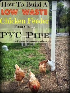 An Inexpensive PVC chicken feeder that's SUPPOSED to cut down on wasted feed. But did it work as advertised? Check it out & see... #TexasHomesteader