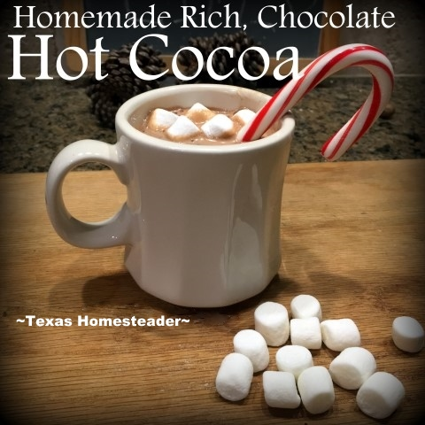 Homemade hot cocoa is delicious & only uses cocoa, sugar & milk - flavored with vanilla & a few miniature marshmallows floating on top. #TexasHomesteader