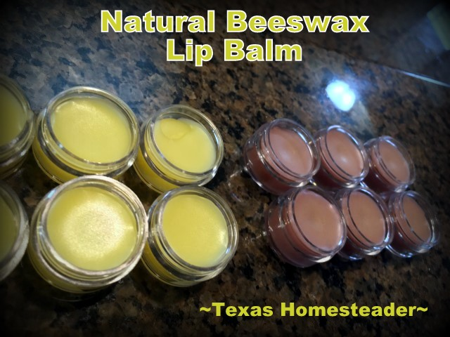 Homemade beeswax lip balm. Here's a list of homemade Christmas gift ideas. Don't wait - get started NOW for a homemade Christmas you and your family will LOVE! #TexasHomesteader