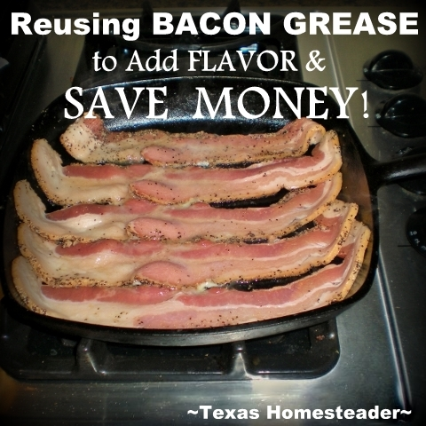 We don't use bacon grease every day but it's still a budget saver in my kitchen. Much flavor is added to typical staples too #TexasHomesteader