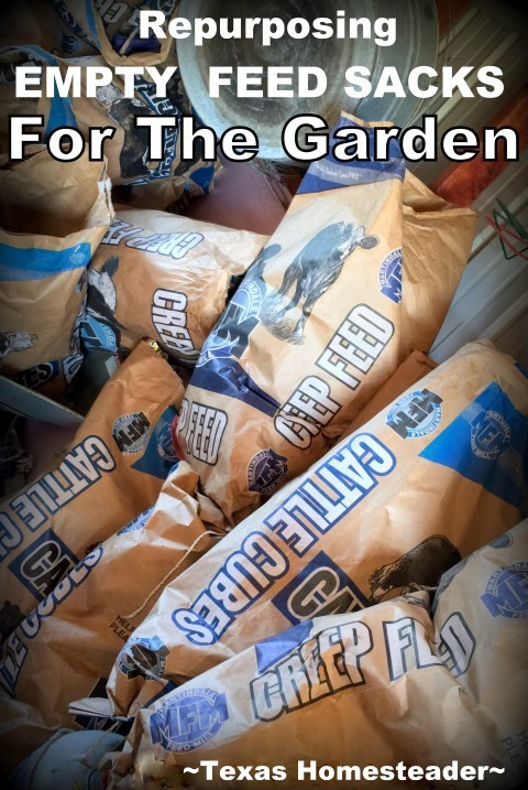 Did you know you could use plain heavy-duty empty feed sacks to reduce or eliminate weeding in your garden? And preserve soil moisture? AND feed the earthworms?? Check it out. #TexasHomesteader #Repurposing #PaperBags #Garden #SaveTime #SaveMoney