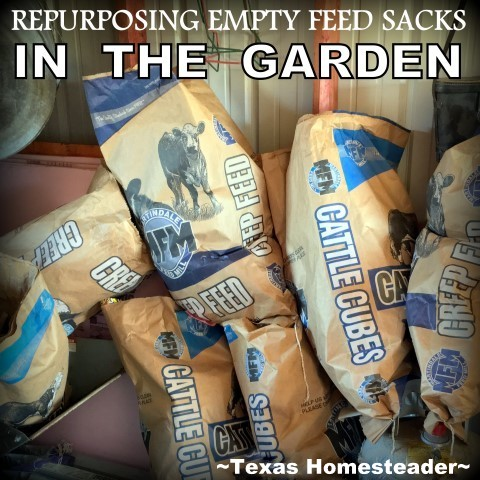 I take empty feed sacks and opt to use them in my garden. They'll not only save me untold hours pulling weeds but also help my soil! #TexasHomesteader