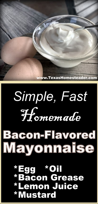 I can make my own bacon-flavored mayonnaise in minutes. #TexasHomesteader