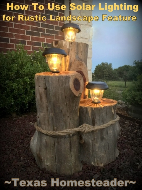 The sun charges the batteries for this solar light feature for FREE. #TexasHomesteader