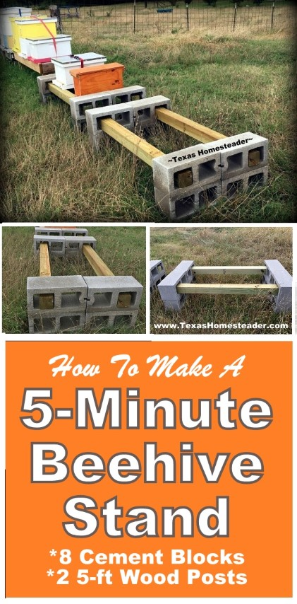 Simple apiary beehive stand can be put together in 5 minutes using eight cement blocks and two 5-ft posts. #TexasHomesteader
