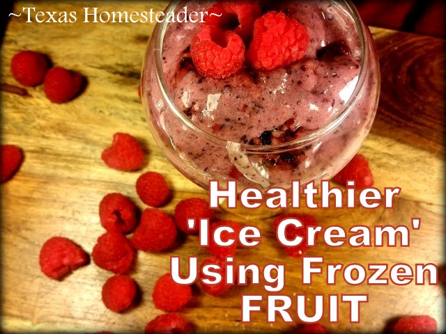 Healthy Frozen 'Ice Cream' Treat Using frozen berries & bananas. Creamy like ice cream & flavors are endless. Curious? Check it out. #TexasHomesteader