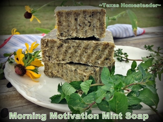 This is a very easy recipe for a good homemade cold process soap. Morning-Motivation Mint Cold-Process Soap - Refreshing! #TexasHomesteader