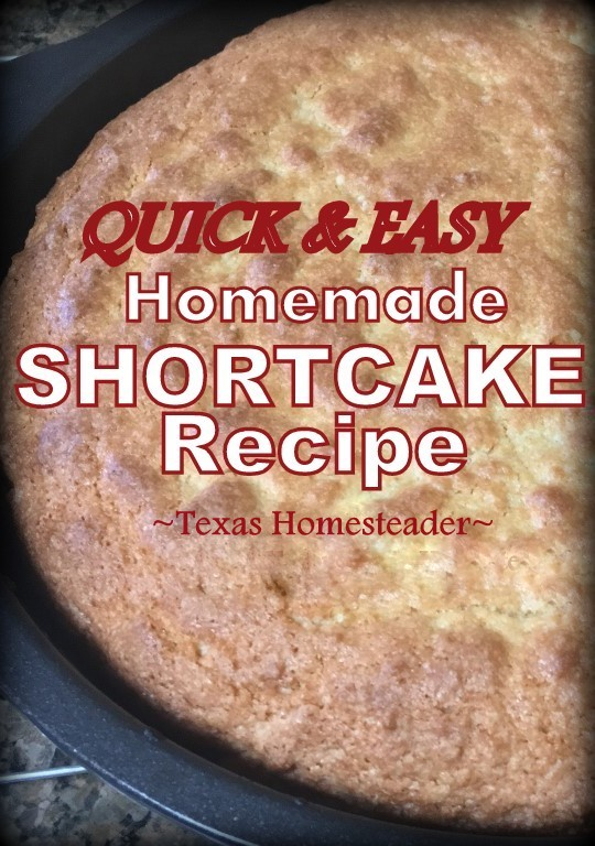 I wanted a strawberry shortcake dessert but I wanted to make it all from scratch. This homemade shortcake recipe is fast & easy! #TexasHomesteader