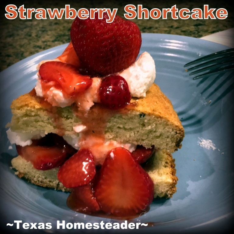 I wanted to make Strawberry Shortcake from scratch & was pleasantly surprised at how easy & quick it was - even the whipped cream! #TexasHomesteader