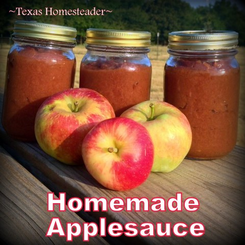 Not only do I enjoy eating homemade applesauce straight from the jar, but it replaces a cooking item I typically have to buy. #TexasHomesteader