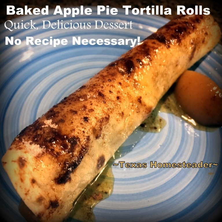 Throw-Back Thursday: Delicious, quick Apple Pie Tortilla Rolls. No recipe is even needed! Here's a quick dessert option for your home too. #TexasHomesteader