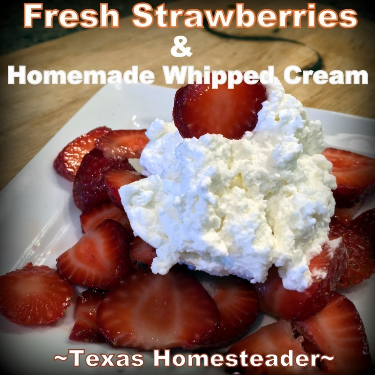 A delicious dessert needn't take lots of time, one of our favorite desserts is strawberries & fresh whipped cream. Dessert in a flash! #TexasHomesteader