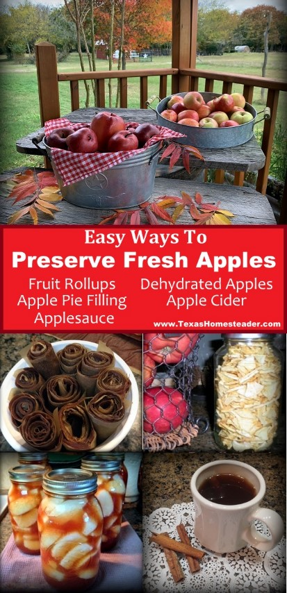 Come see my 5 favorite ways to preserve fresh apples. #TexasHomesteader