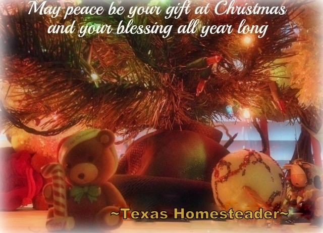 "RancherMan & I offer up a heartfelt ""Merry Christmas""! May your holiday be filled with the warmth, peace, love & joy that is Christmas! #TexasHomesteader"