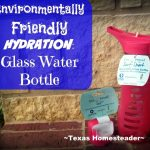 here are many gift options for environmentally-aware for friends. Help them ditch the plastic with a safety razor or glass water bottle - many gift ideas! #TexasHomesteader