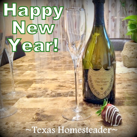Happy wishes to all for a healthy, prosperous New Year filled with love and happiness! #TexasHomesteader
