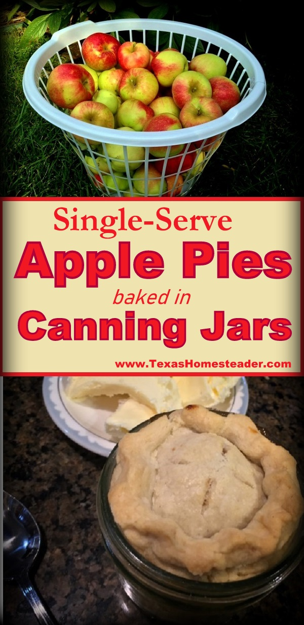 This canning-jar apple pie is baked in single-serve half-pint canning jars. So cute! #TexasHomesteader