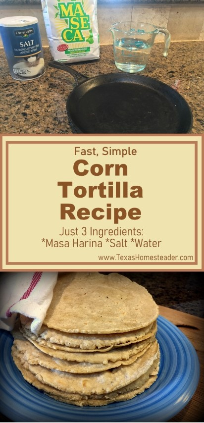 Simple corn tortilla recipe uses only 3 ingredients: Masa harina, salt & water #TexasHomesteader