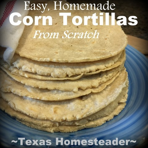 Easy homemade corn tortillas. Planned Leftovers - remake leftover pork roast into a totally new dish: Carnitas Tacos. Delicious & you can make your own taco shells too! #TexasHomesteader