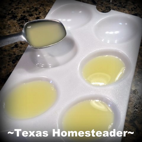 You could buy a plastic bottle of real lemon or lime juice, but why? Come see my easy, zero-waste (and CHEAP) solution for having 100% real citrus juice for my recipes. #TexasHomesteader