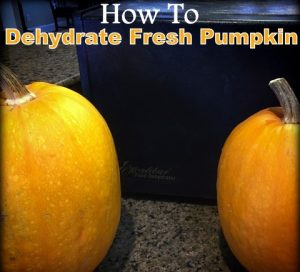How to dehydrate pumpkin to use all year long! These fresh pumpkins won't be wasted and now can be stored in tiny jars in my pantry. #TexasHomesteader
