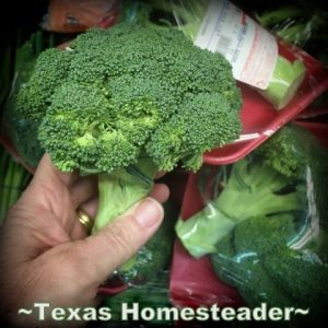 Broccoli NOT wrapped in plastic. How to reduce the plastic trash heading to the landfill. Come see my easy tips to be kind to our Mother Earth & reduce landfill-bound plastic #TexasHomesteader