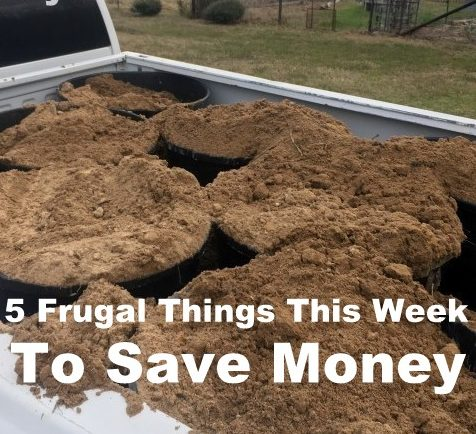 Our income is low, but there are many easy ways to save money. Come see 5 Frugal Things we did this week to save some cash! #TexasHomesteader