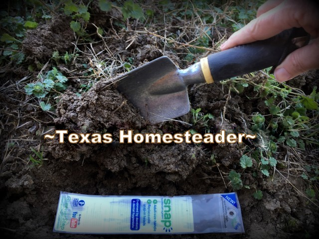 Biodegradable packaging. Low-Waste Toothbrush Option - replace only the worn heads and reuse the handle over & over again. A Snap toothbrush can lower your toothbrush waste by 93%! #TexasHomesteader