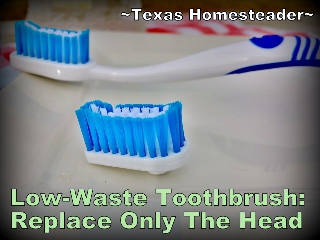 Low-Waste Toothbrush Option - replace only the worn heads and reuse the handle over & over again. A Snap toothbrush can lower your toothbrush waste by 93%! #TexasHomesteader