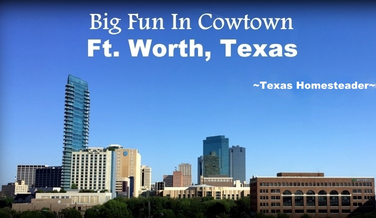 We took a vacation in Ft. Worth, Texas. I've lived in the Dallas area most of my life, so of course I've been to Ft. Worth many times. But it was always to drive to a specific location or event, never to stay & play. Now this is gonna be fun! #TexasHomesteader