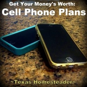 Be mindful of small cell phone charges. How we successfully keep our monthly income requirement LOW to be able to live w/o a corporate paycheck. Part 1 of a 2-part series! #TexasHomesteader