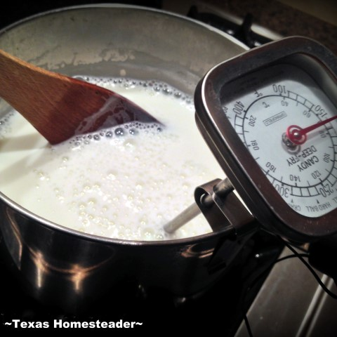 I often use lightly-soured milk to make my own delicious cottage cheese. This reduces our food waste and provides delicious food. #TexasHomesteader