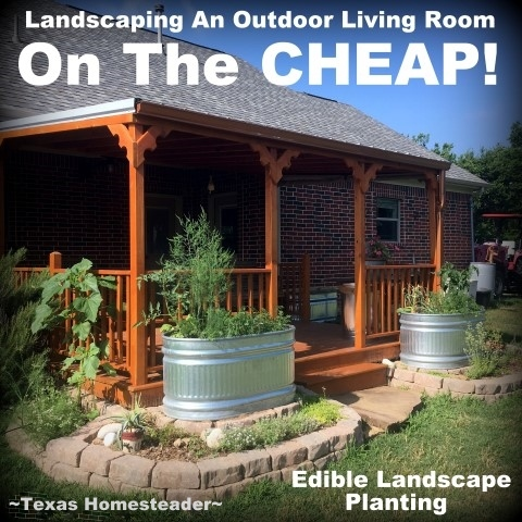 See my tips on landscaping an outdoor living area on the CHEAP! #TexasHomesteader