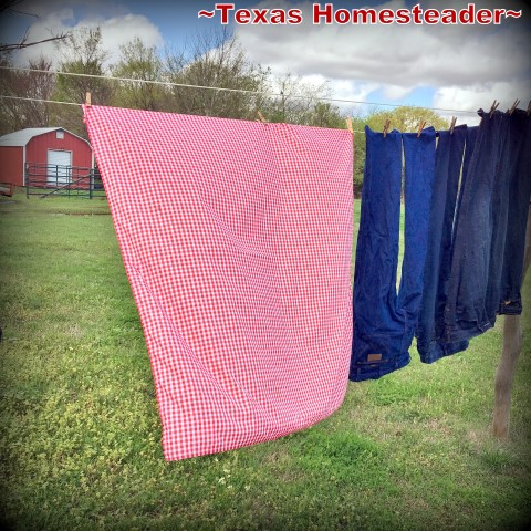 Hanging clean laundry on the line under that blazingly-blue sky just speaks to my heart, reminding me of slower & gentler days gone by. #TexasHomesteader