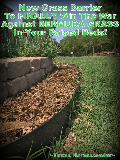 Bermuda grass barrier strip. We needed to landscape our porch area. But soil and plants are expensive! Come see I'm landscaping it beautifully on the cheap. #TexasHomesteader