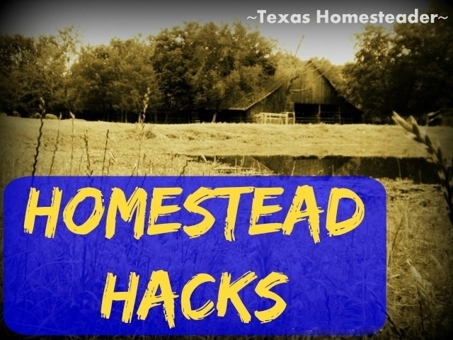 Check out this Homestead Hack & see how we used an empty, repurposed coffee canister to make a low-waste chicken feeder for cheap! #TexasHomesteader