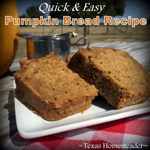 Quick & Easy Pumpkin Bread Recipe. This one uses a shortcut of a box of cakemix. Quick, Easy & DELICIOUS! #TexasHomesteader