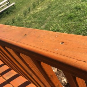 How do you keep birds (and bird POOP) off your porch or deck railings? We came up with a simple, CHEAP solution that works like a charm! #TexasHomesteader