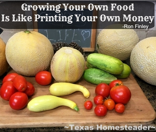 Think About It: Growing Your Own Food Is Like Printing Your Own Money! Healthier, tastier and less expensive too. Gotta Love It. #TexasHomesteader