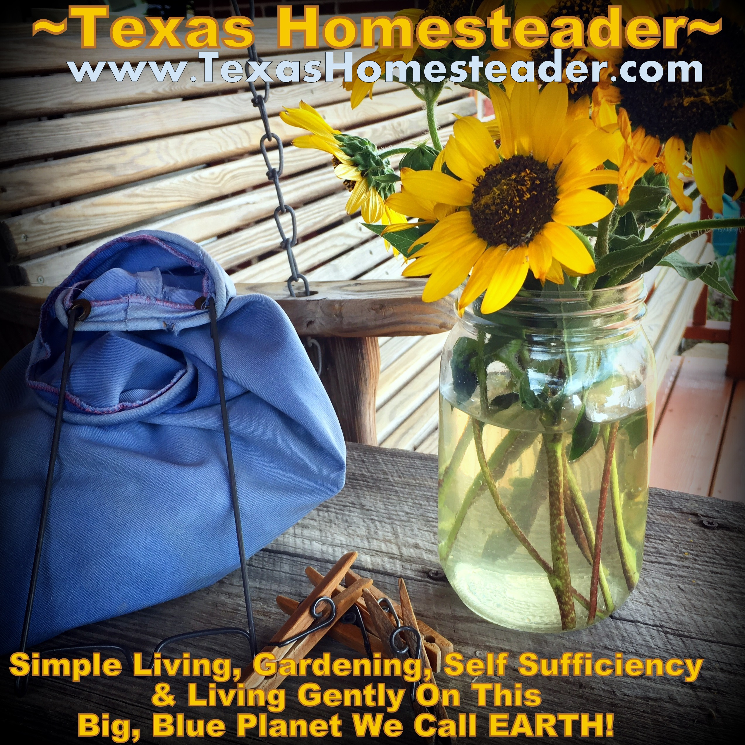 As promised my little ole blog has been moved from a mere extension of a website to its very own location, www.TexasHomesteader.com