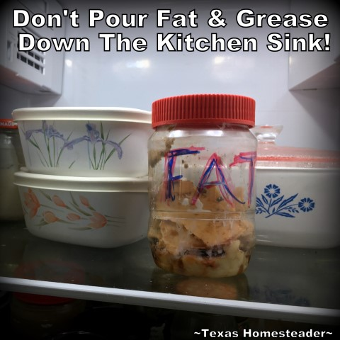 Flushing grease and fat down your kitchen sink drain is a recipe for disaster. But how do you dispose of the fat from a roast or grease from the pan? Check out this homestead hack. #TexasHomesteader