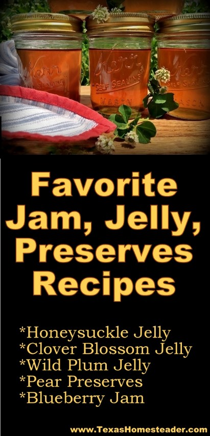 We have lots of great jelly recipes on our site, some don't even require added pectin. Come see how easy it is! #TexasHomesteader
