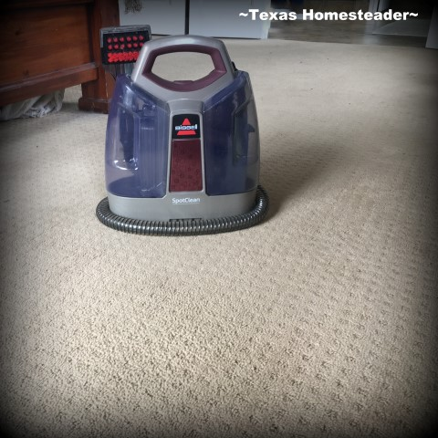 Pet stains on your carpet? We struggled for years to remove the stain, even using a professional carpet cleaning company. But this homemade stain treatment was what actually worked! #TexasHomesteader