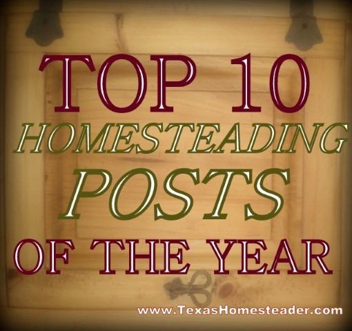 2015 Top 10 Posts. Today I'm sharing with you the TOP 10 Homesteading Posts of the Year! Curious to see the most popular posts? #TexasHomesteader