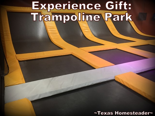 Our kids requested experience gifts only for our grandchildren. We wanted something more physical for them so we took them to an Obstacle Course. #TexasHomesteader