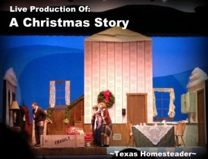 Live Production Play. We opted for an experience gifts over toys for our grandchildren at Christmas. Come see examples of the fun times we've spent with them. #TexasHomesteader