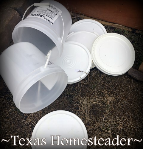 Repurposing plastic buckets in the bottom of large water troughs. Planting large galvanized water troughs for edible beauty around your home. It's easy and can be done inexpensively too. #TexasHomesteader