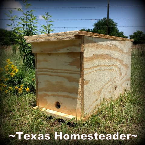 Nuc box built from plywood for temporary honeybee housing - swarm #TexasHomesteader