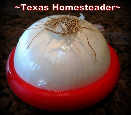 Silicone Food Huggers. Looking for simple, inexpensive Mother's Day gifts for your eco-conscious mom? We've made a list of our favorites. #TexasHomesteader